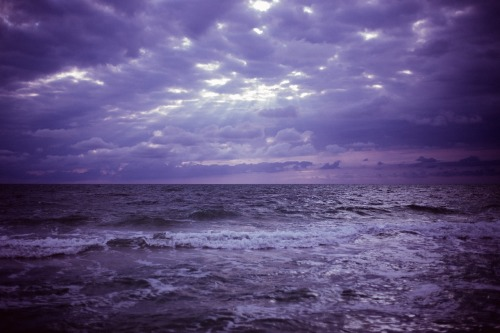 purple-2617061_1280.jpg