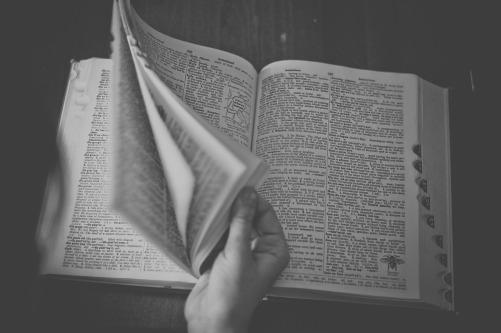 dictionary-698538_1280.jpg