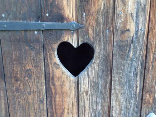 heart-978119_1280.jpg